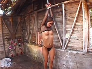 Punishment on the farm